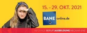 BANE Banner 201